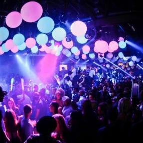 Go wild in trendy night club